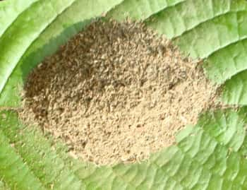 "Kratom <i>kratom tea powder</i>  Superior Malaysia Review Glyndon&#8217;></p> <p>  scale. Sources: Kratom can <i>kratom capsules thai christmas</i>  be <br /><iframe width=""420"" height=""315"" src=""http://www.youtube.com/embed/530-ZdVHVHQ"" frameborder=""0"" allowfullscreen></iframe><br />  <a href=http://maengdakratomsource.com/?p=3426/>purchased in large quantities</a> directly from growers but most customers in the United States and Canada prefer to order personal use quantities from reputable Kratom vendors in their own countries. Discretion is admitragynable when purchasing Kratom due to the large number of unscrupulous online retailers selling sub-par or even fake Kratom that is dangerous to consume. Most Canadian customers buy from American sites but more Kratom stores from Canada such as madamkratom.ca have been appearing and offer lower shipping costs faster delivery and competitive prices. Nonetheless many customers continue to order from American sources due to a lack of information or a perceived better value from U.</p> <p>This super herb allows you to use ancient eastern healing traditions in a way that is convenient for the <i>Kratom Superior Malaysia Review Glyndon</i>  modern user. Once separated from the tree the plant can benefit the body in a number of ways. The plant works as a mild sedative reducing pain depression tension anxiety and drug withdrawal. In some individuals the calming effects of the supplement has been known <a href=http://news.heartland.org/newspaper-article/2015/08/27/war-against-kratom-heats>to reduce</a> chills and fever. Holistic doctors herbalists ayurvedics and <b>kratom in las vegas bidwell</b>  chiropractors have used kratom in small doses to reduce tension and moodiness in their clients.</p> <p>You may order Kratom online at kratomlounge.com. Choose from powdered leaf extract supplement form for the proper doses to meet your needs. Each product description comes with information on how to use the herb.</p> <p>Sources: Kratom can be purchased in large quantities directly from growers but most customers in the United States and Canada prefer to order personal use quantities from reputable Kratom vendors in their own countries. Discretion is admitragynable when purchasing Kratom due to the large number of unscrupulous online retailers selling sub-par or even fake Kratom that is dangerous to consume. Most Canadian customers buy from American sites but more Kratom stores from Canada such as madamkratom.</p> <p>While it is still largely unknown in the west it is slowly becoming more popular and is readily acquired online. References: Chittrakarn S Sawangjaroen K Prasettho <b>Kratom Superior Malaysia Review Glyndon</b>  S Janchawee B Keawpradub N. Inhibitory effects of kratom <a href=http://www.kratomexperiences.co/kratom-uses/how-to-make-kratom-tea/>leaf extract</a> (Mitragyna speciosa Korth.</p> <p>Of course the amount and frequency with which you use the herbs can have an effect on herbal highs. The more herbs you use the more likely it is you will experience a more intense high; consequently if you use herbs on a very frequent basis your herbal high may be different. Again using herbs or incense products as a way to get high will probably result in a totally different experience </p> <p><img src="