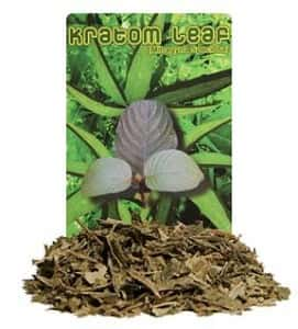 Dried Kratom Dose