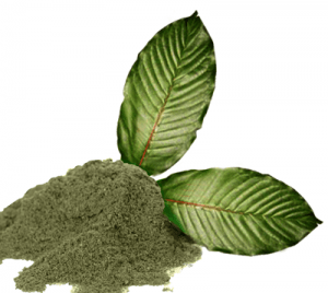 Kratom Varieties Effects