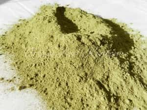 Kratom Kidney Damage