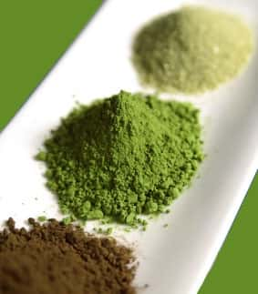 kratom strains differences